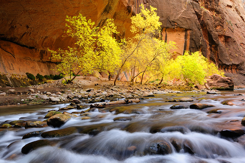 Virgin Narrows, Zion National Park, UT